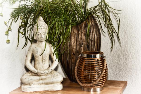 tips mediteren